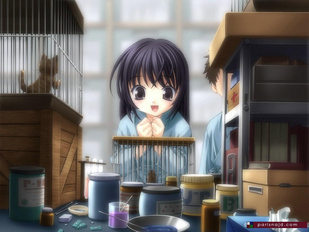 anime_parisnajd6071